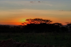 Sunset-over-Acacia